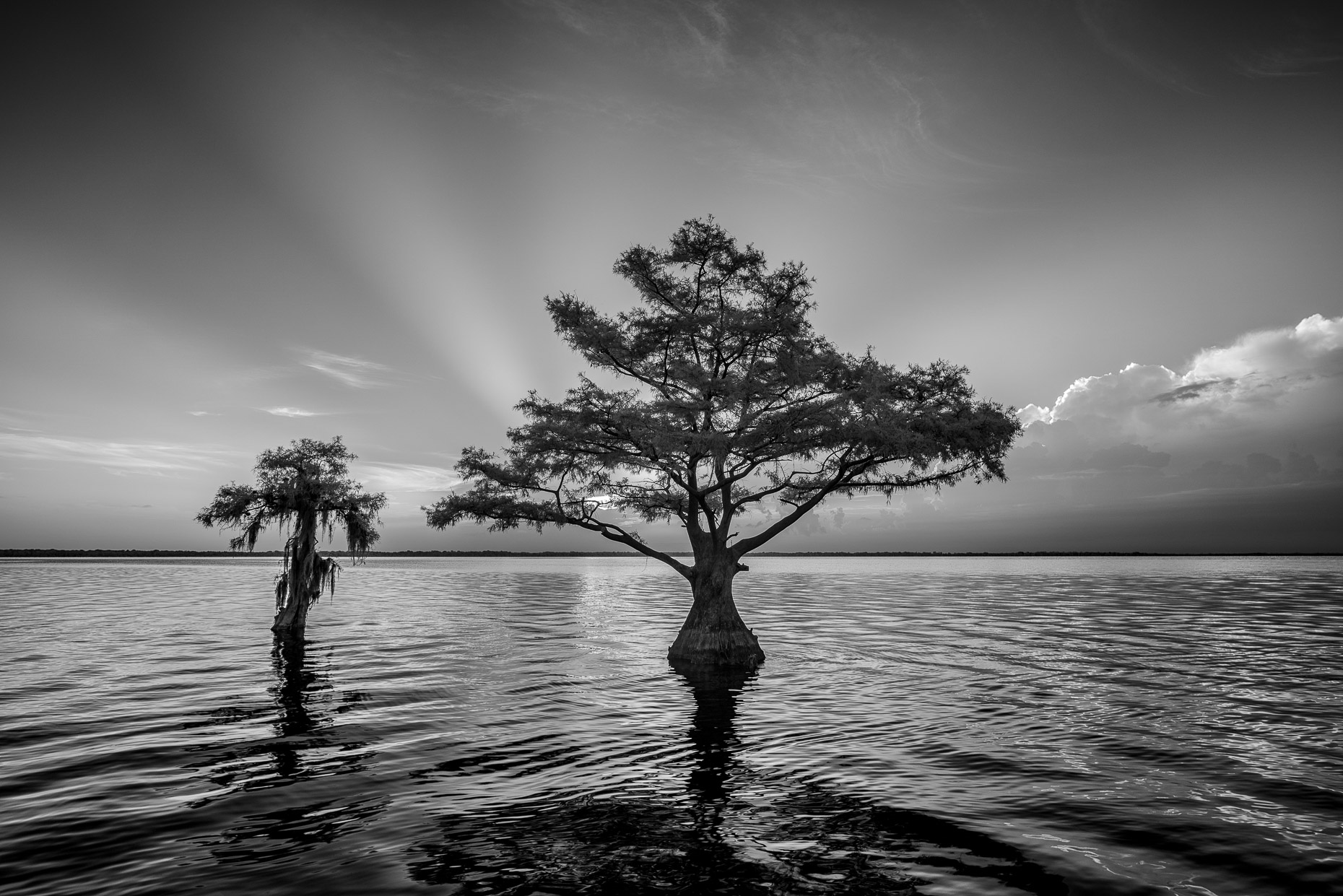 20160804_blue_cypress_lake_0010