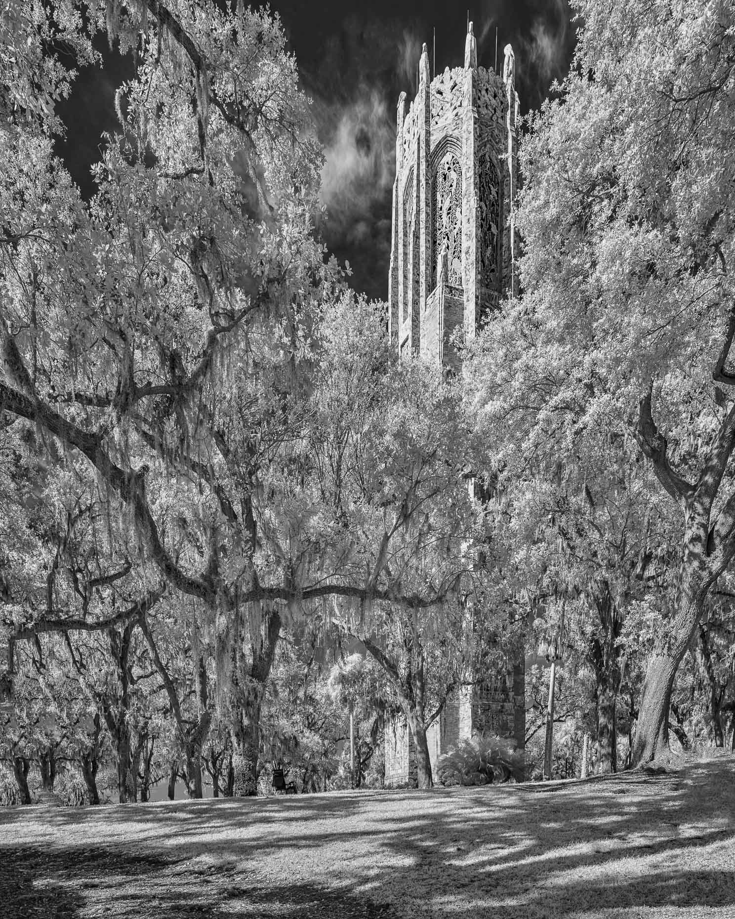 20171216_bok_tower_0015